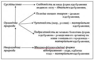 shema5